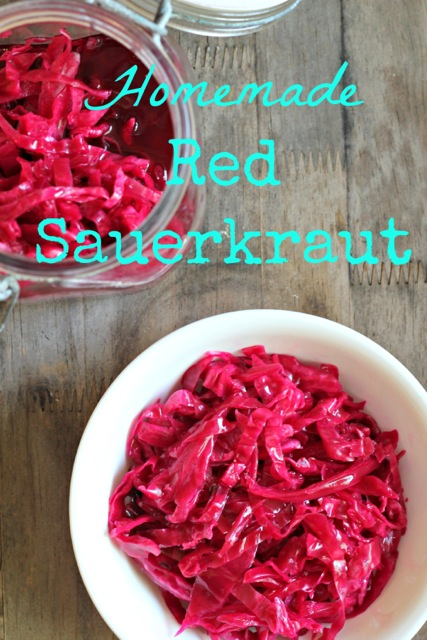 Fermented Red Cabbage